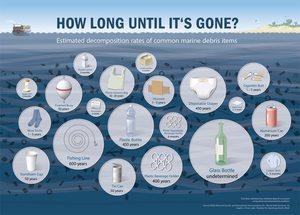Wie lange dauert die Verrottung